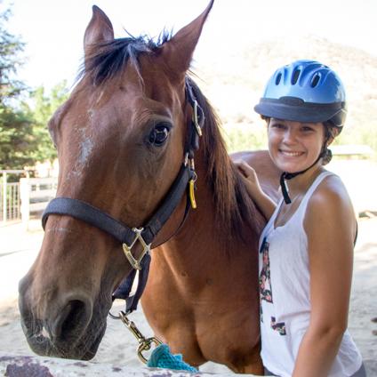 horse-camper